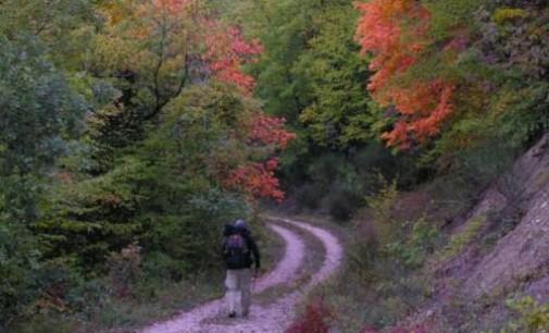 Camminando sui sentieri di san Francesco