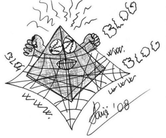 La Piramide e la Rete