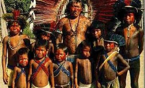 Gli Indios del Brasile. Cultura indigena, storia e portoghesi – 1