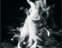 Pensieri in fumo, di Fabio Cerroni