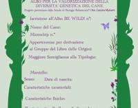 Be Wild! Albo per la valorizzazione della diversita' genetica del cane