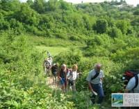 Avviso pubblico per le visite guidate al Parco del Treja