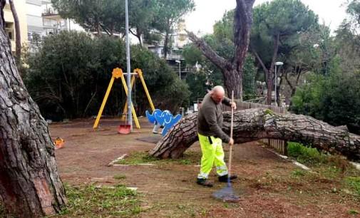 Municipio Roma XV: pulito il Parco Giochi di Via Valdagno