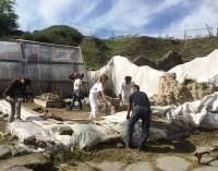 Pompei – Al via i lavori di recupero della Schola Armaturarum
