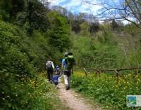Ecoturismo Il 62% degli italiani visita parchi naturali