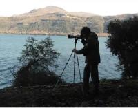 Parco regionale dei Castelli Romani – Censimento avifauna svernante 2016, i risultati