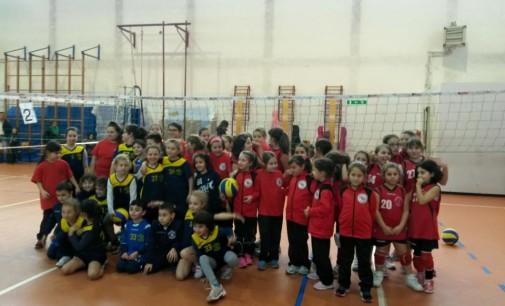Pallavolo Eventi- Grande partecipazione alla prima Tappa del Torneone di Minivolley