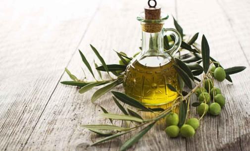 Agricoltura e olivicoltura. Migliaia di produttori a rischio fallimento