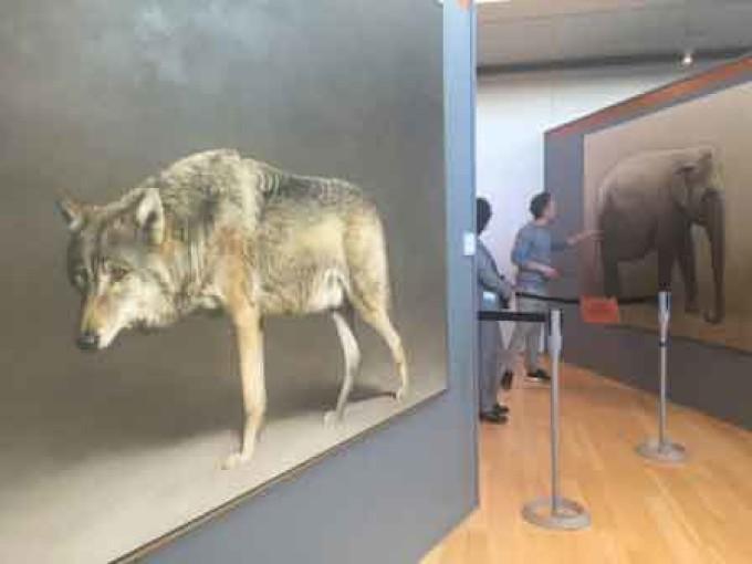 MUSE di Trento. Scienza, arte e imprenditorialità si incontrano