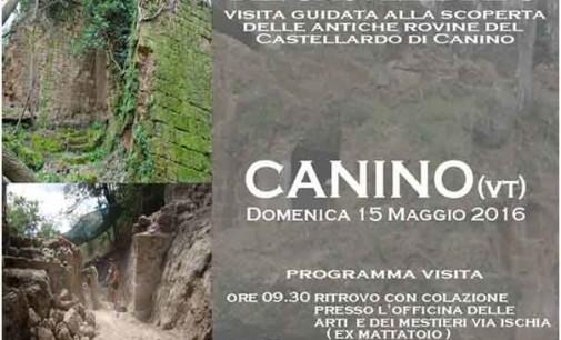 Passeggiata archeologica tra le rovine di Castellardo a Canino