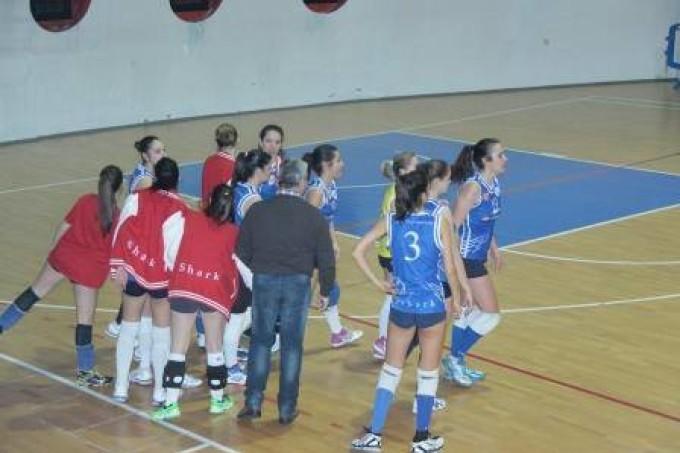 """Volley Club Pomezia, il 1° luglio verrà presentata la nuova stagione nello """"Shark-day"""""""
