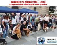 """""""La coppia dell'estate"""":  l'evento animalista del lago di Como"""