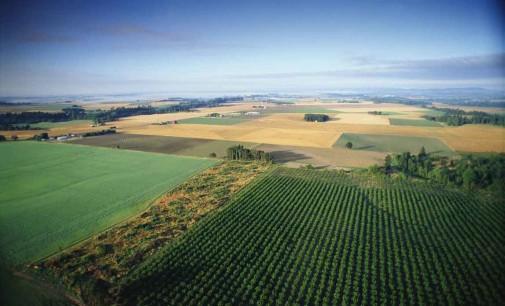 Agricotura italiana, eccellenza da valorizzare