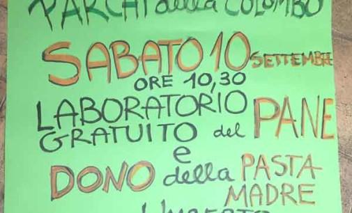 Dono della pasta madre e laboratorio del pane al Mercato Contadino Castelli Romani