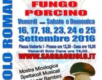 Sagra del fungo porcino – Oriolo Romano (VT) – 16/25 settembre