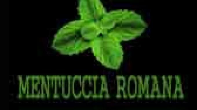 Mentuccia Romana, si presenta