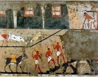 museo Egizio, in occasione del Salone del Gusto