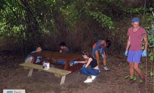 Parco Valle del Treja – Si conclude il campo di volontariato internazionale