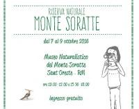 """Il Museo Naturalistico del Monte Soratte ospita la mostra """"Sketch your Park"""","""