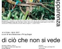PAC Padiglione d'Arte Contemporanea, Milano  – L'apparenza