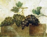 La tradizione della Vendemmia A Pompei (XVII Edizione)