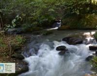 Parco del Treja – Visita guidata tra i colori autunnali
