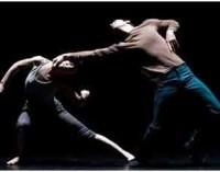 DANZA: AN EVENING WITH ROY ASSAF 12-13 novembre h 21 e tanto altro Teatro Vascello