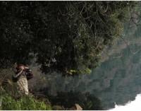 Parco regionale dei Castelli Romani – Censimento dell'avifauna svernante 2017