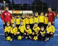 Asd Borussia calcio, come crescono i Pulcini 2008