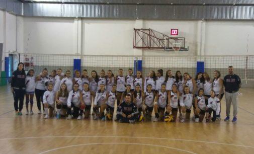 San Nilo Grottaferrata (volley), Lauri: «A metà febbraio inizieremo una Terza divisione U18»