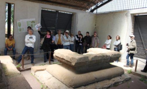 Sabato 4 marzo e 1 aprile 2017   Visite guidate all'area archeologica di Lavinium