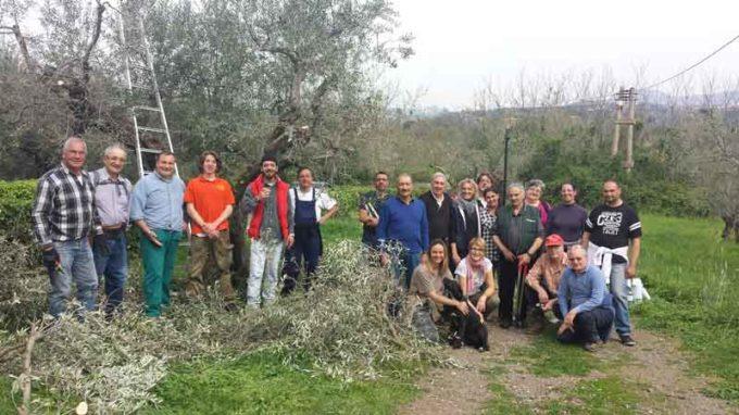 Velletri – Corso di dimostrazione e formazione per potatura ulivi