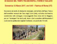L'antica via Amerina  In viaggio nel tempo tra necropoli, forre e tagliate