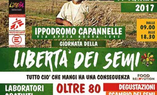 Giornata della libertà dei semi al Mercato Contadino Capannelle