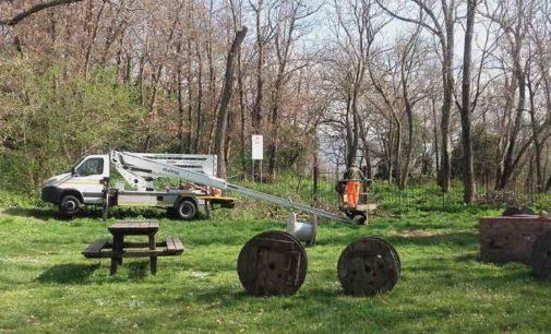 Cura del verde – a Tuscolo gli interventi di pulizia