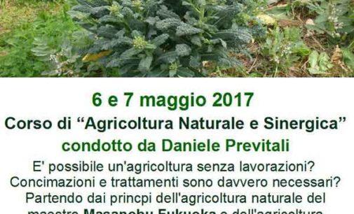 """Velletri – Corso di """"Agricoltura Naturale e Sinergica"""""""