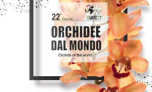 Orchidee dal Mondo 2017  Monte Porzio Catone 21 – 22 – 23 aprile 2017