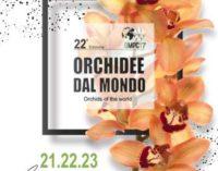Orchidee dal Mondo 2017.  Monte Porzio Catone 21 – 22 – 23 aprile 2017