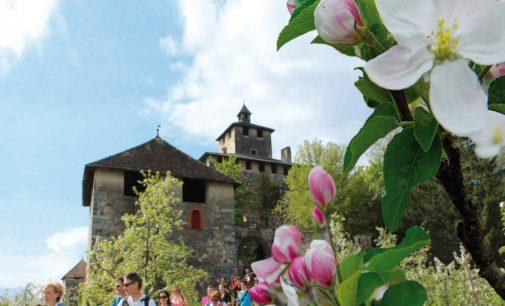 Quattro ville in fiore… è la primavera ha inizio in Val di Non