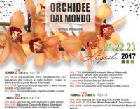 Mostra Orchidee dal Mondo. 21-23 aprile 2017