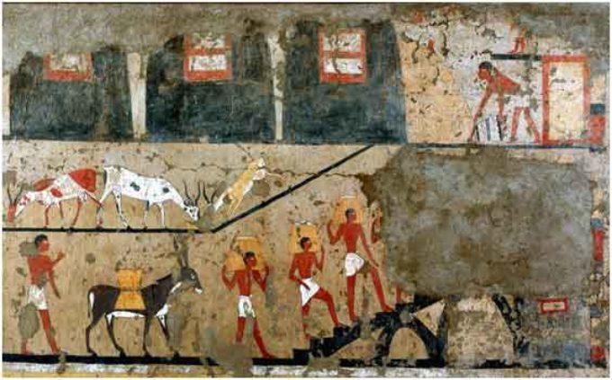 """Museo Egizio –  """"L'Antico sapere dei faraoni"""""""