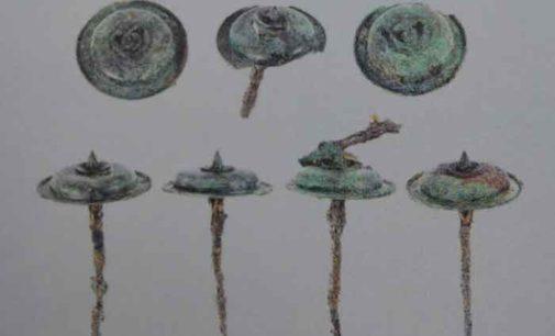 Sottratta nella notte una borchia in bronzo alla Mostra Pompei e i Greci