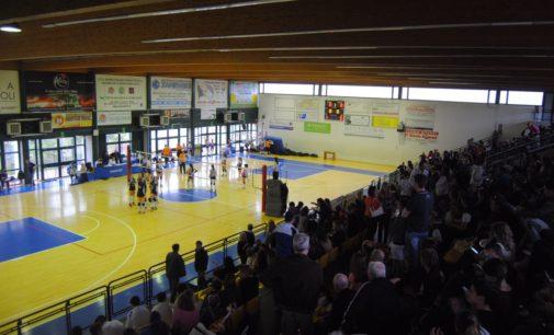 Volley Club Frascati, Musetti: «Le finali Under 14? Una grande festa». Via alle prove gratuite