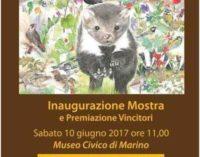 """Concorso di disegno naturalistico """"Maria Vittoria Croce, la natura con gli occhi del cuore"""""""