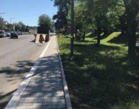 Valmontone: nuovo marciapede e piante rinnovate sul viale della Stazione