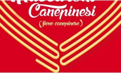 """Sagra dei Maccaroni Canepinesi, meglio conosciuti come il """"fieno canepinese"""""""
