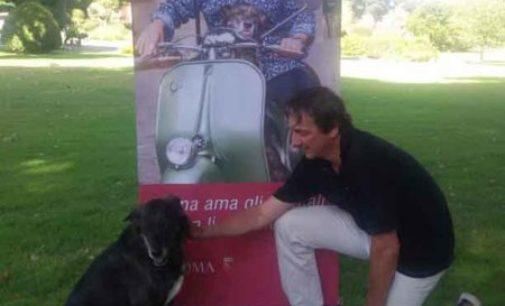 """""""Vacanze romane. Roma ama gli animali e non li abbandona"""""""