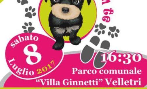 """Velletri – 4a edizione """"Vengo via con te"""""""