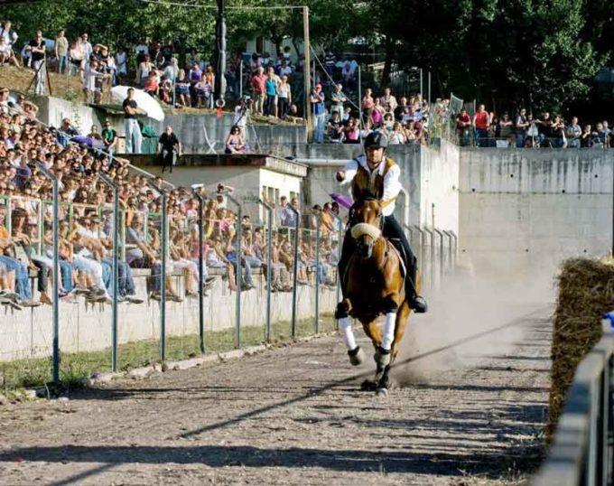 Carpineto – Al via le qualificazioni dei 7 cavalieri che si contenderanno il Pallio della Carriera 2017