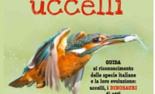 In libreria, per tutti, i consigli d'un piccolo ornitologo